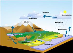 The watercycle